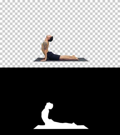 Flexible strong yoga man in Upward and Downward Facing Dog Urdhva Mukha Svanasana, Alpha Channel