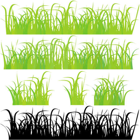 Grass 4 different types Stock Vector - 11661884