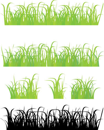 Grass 4 different types , pieces, and silhouette Stock Vector - 11661906