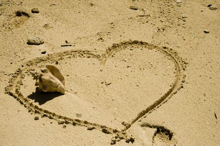 I LOVE YOU ! Shell inside heart. Stock Photo