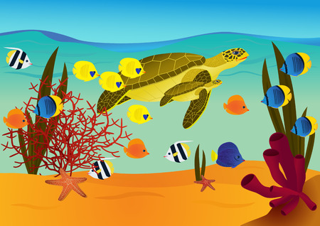 underwater fishes: Underwater scene with cartoon turtles and fishes. vector illustration