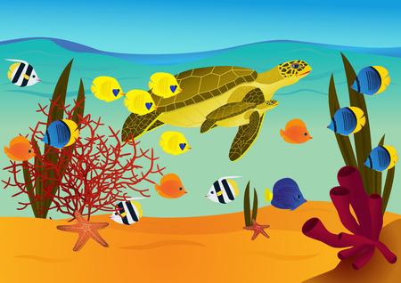 underwater scene: Underwater scene with cartoon turtles and fishes. vector illustration