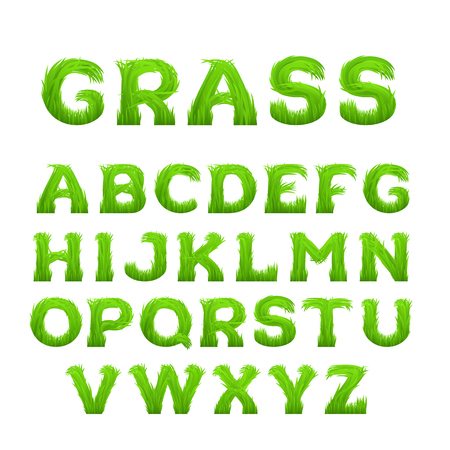 grass font: Spring, summer alphabet made of grass. Early spring green grass font. Concept of eco friendly, natural, bio, organic font isolated on white background. EPS 10 vector illustration