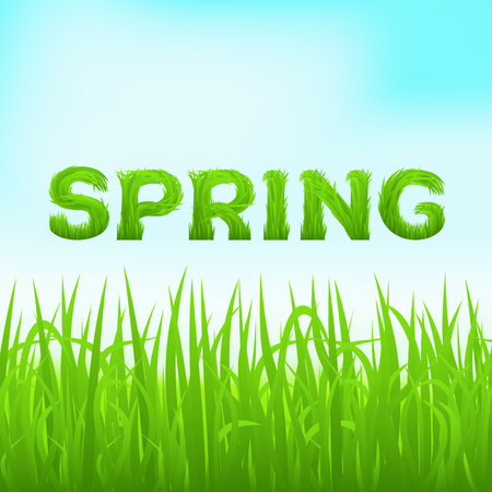 early spring: Spring inscription made of grass. Spring background with green early spring grass on blurred soft background. Grassland blurred background on blue clear sky. Vector illustration.