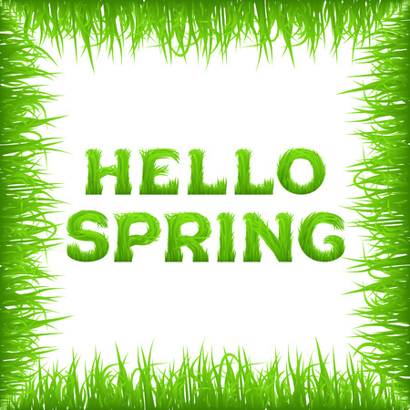 early: Hello spring inscription made of grass. Green early spring grass frame isolated on white background. Realistic eco nature border. Vector illustration