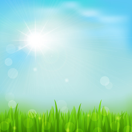 summer border: Spring background with green early spring grass on blurred soft background. Grassland blurred background with sun rays on blue cloudy sky. Vector illustration. Illustration