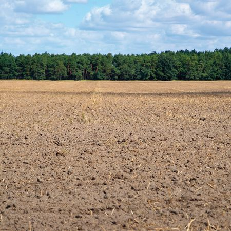 acre: Harvested acre Stock Photo