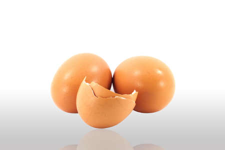 egg shell white background Stock Photo