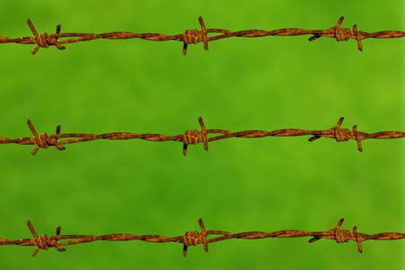Barbed wire in green background photo