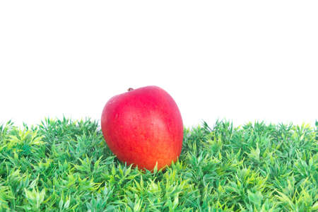 red apple lying on green grass Stock Photo