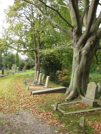 mortal: Old cemetery in the Netherlands Stock Photo