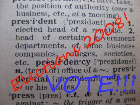 elections 2008 Stock Photo - 3661025