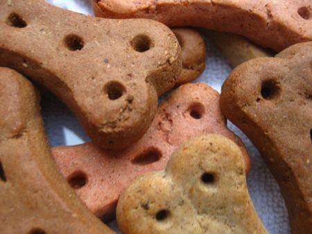 chew over: Dog cookies!