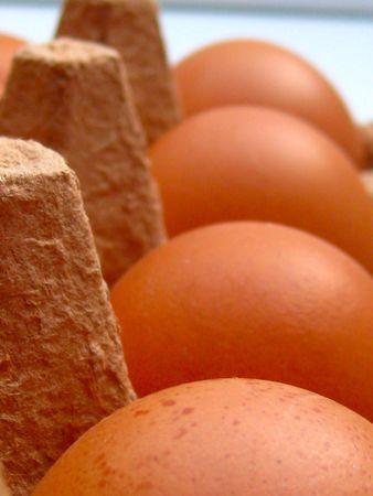 fare: eggs in a carton box