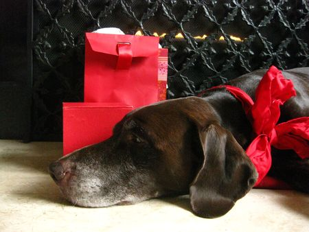 rifrug: pointer guarding the christmas gifts