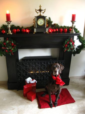 A Christmas fireplace Stock Photo - 3853730