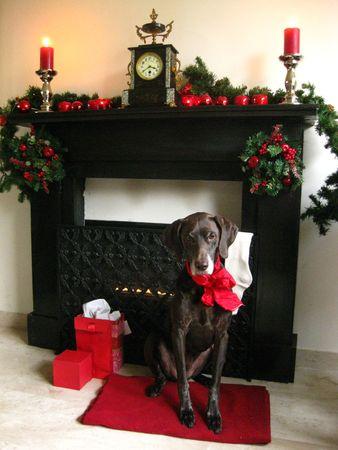 Christmas fireplace Stock Photo - 3910171