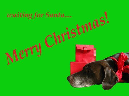 Merry Christmas card Stock Photo - 3887040