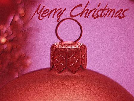 Meery Christmas card photo