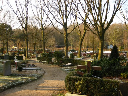 Cemetery in the winter sun photo