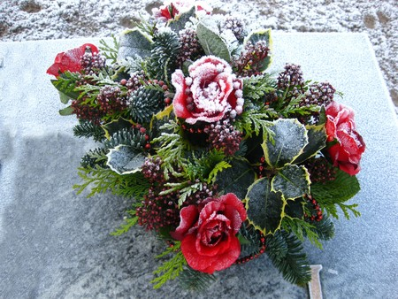Frozen roses on a grave photo