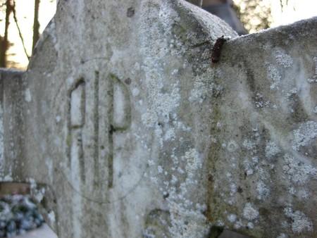 mortal: grave ornament RIP