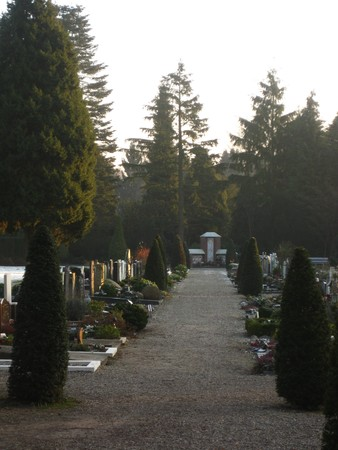 Cemetery in the Netherlands photo