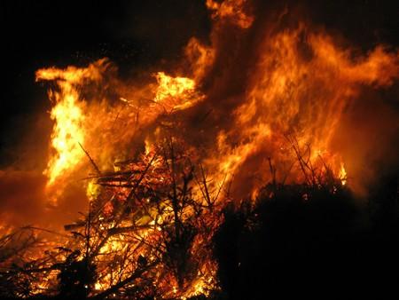 Burning Christmas trees Stock Photo - 4112442