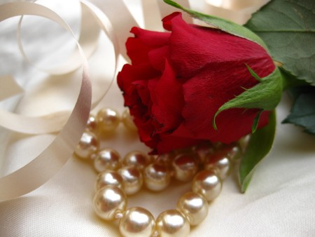 funeral background: rose and pearls on satin