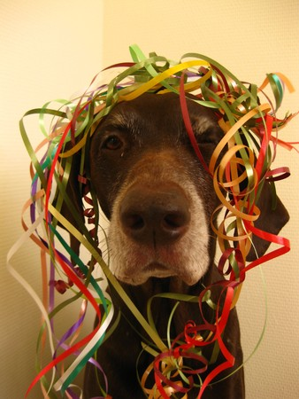 rifrug: Party pointer with colored ribbons Stock Photo