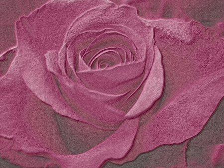 burial: rose drawing Illustration