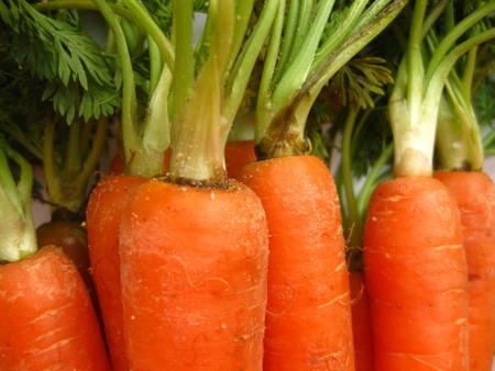 carrots Stock Photo - 4357662