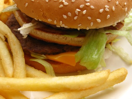 Detail of a burger and french fries Stock Photo - 4442395