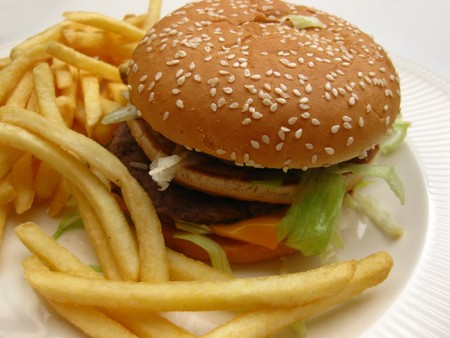 Burger and french fries Stock Photo - 4442400