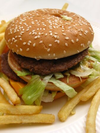 Burger with french fries Stock Photo - 4442401