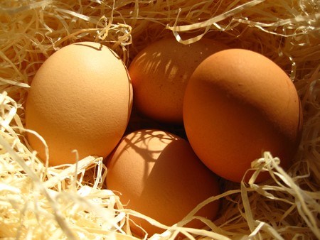 Fresh eggs Stock Photo - 4534206