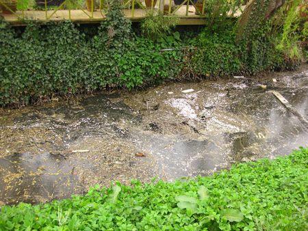 contaminacion del agua: la contaminaci�n del agua Foto de archivo