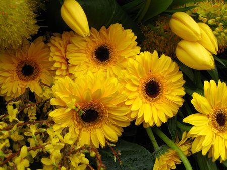 floral arrangement: yellow flower arrangement on floral parade