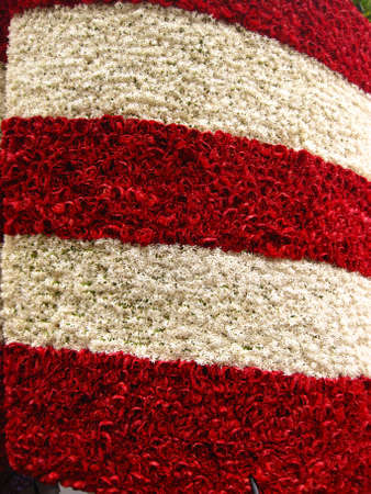 Detail of American Flag stars and stripes in flowers (perfect background) photo