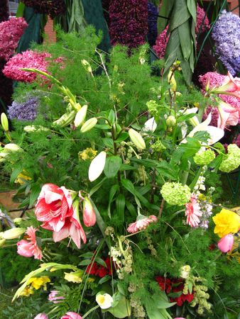 hyacints narcissus: Flower arrangement on flower parade