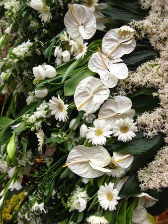 white flower arrangement photo