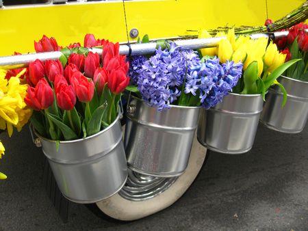 flowers in metal buckets  photo