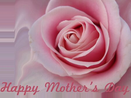 Mothers day card with abstract pink rose photo