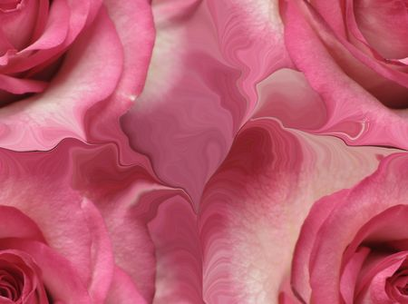 funeral background: Abstract rose background