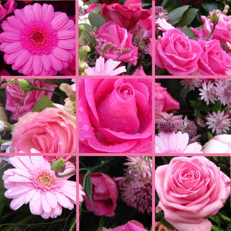 roses collage greeting card photo