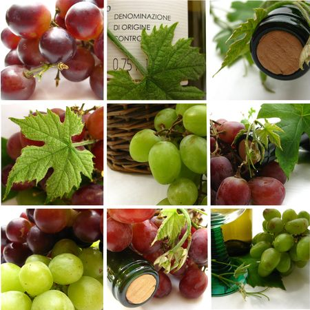 wine collage greeting card photo