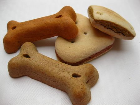 chew over: doggy biscuits
