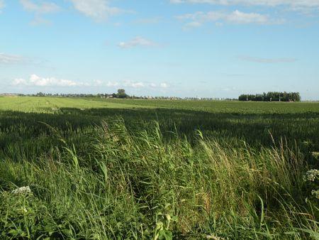 dikes: Dutch polder landscape