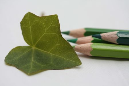 Drawing a greap leaf photo