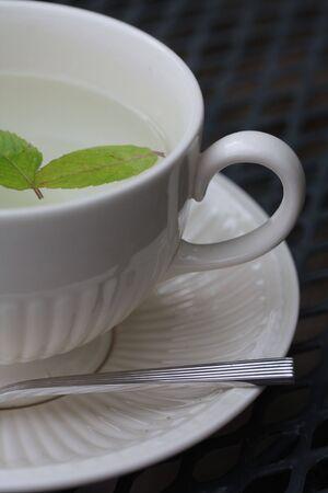 Mint tea in a teacup Stock Photo - 5291085